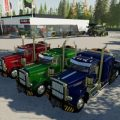 FS19 PETE 389 HEAVY VE1 V1.0 / FS19 Trucks